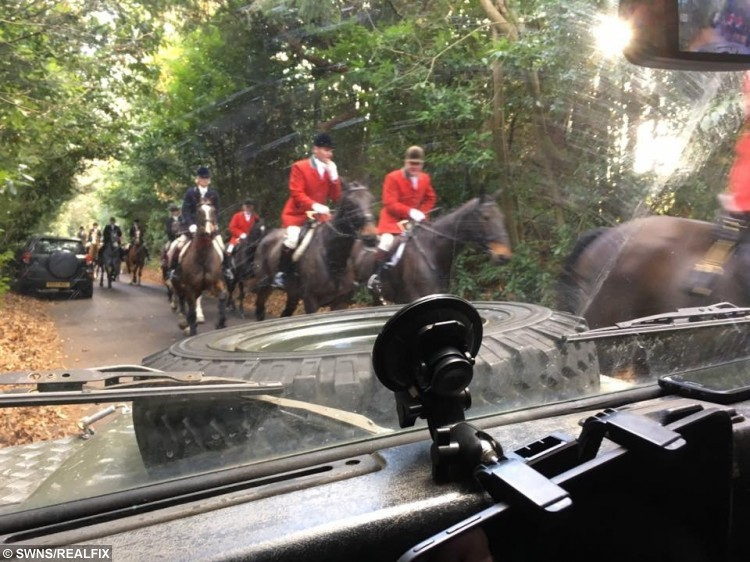 The Old Surrey Burstow & West Kent Hunt near Tunbridge Wells, Kent taking a dead fox after they say it was killed by the hunt