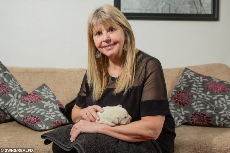 Puppy Fiona, with her owner Elaine Cooper