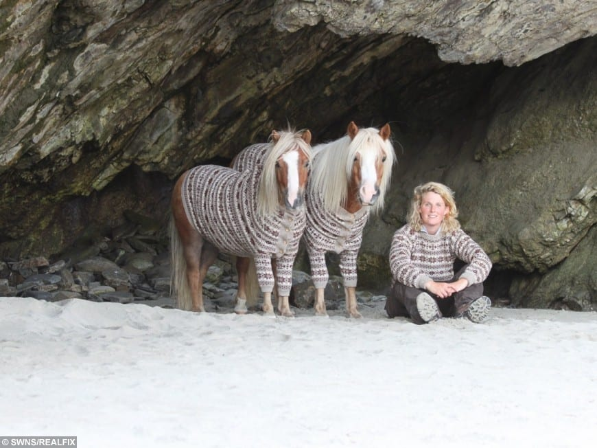 horse trainer sails her ponies to the shetland islands on a tiny