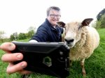 Selfie-Loving Sheep Becomes Local Celeb In Rural Village Because He Loves Posing For Photos