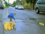 Residents Protest Against Potholes By Filling Them With Rubber Ducks