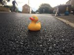 Quack Repair Job – Village Finally Gets Potholes Filled After Residents Floated Rubber Ducks In Protest