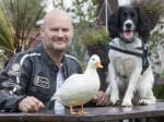 Veteran Saved By Dog And Duck After Fighting For His Life In A Coma