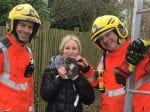Red-Faced Woman Had To Be Rescued By Firefighters After Climbing Up Tree To Rescue Her CAT