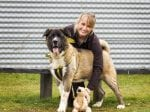 Ten-Month Old Bear Weighing A Staggering 40kg Is Looking For A New Home