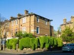 Talented Gardener Transforms Hedges Outside Urban Homes Into Enormous ANIMALS