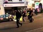 Watch As Carefree Swan That Stormed Into A Party Street Is Escorted Away By Police