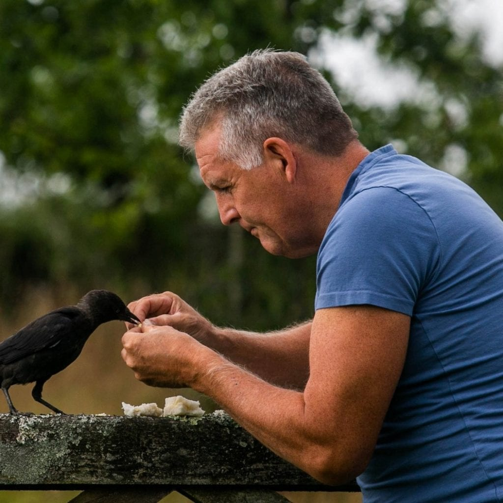 Man Has Unique Bond With A Wild JACKDAW After He Nursed It Back To Health