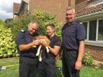 Curious Puppy Rescued By Firefighters After Getting Stuck In A Tiny Gap Between Shed And House