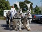 Bride Rode HORSE To Her Own Reception – Still Wearing Her Wedding Gown