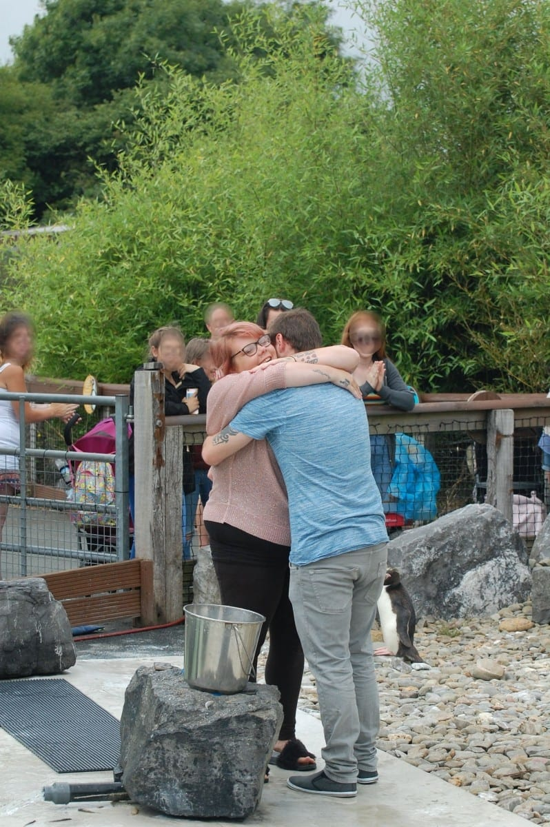 Adorable Moment Woman Proposes To Boyfriend Surrounded By Penguins
