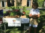 Schoolboy Stanley Starts Business Selling Homegrown Veg To Raise Cash For Good Causes