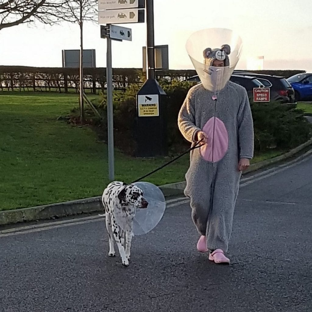 Vet Dresses As Giant Mouse To Calm Nervous Rescue Dog