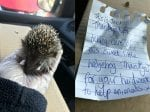 Heart-Warming Note Left For Animal Rescuers Who Went To Collect Poorly Hedgehog
