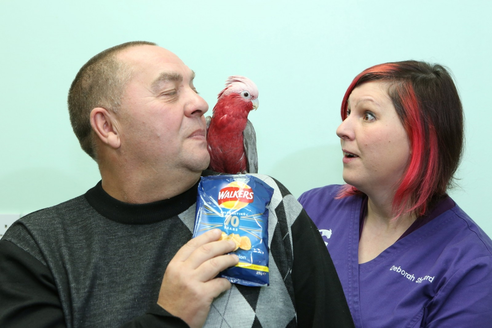 Cockatoo Banned From Eating Crisps Because Of Gut And Liver Problems