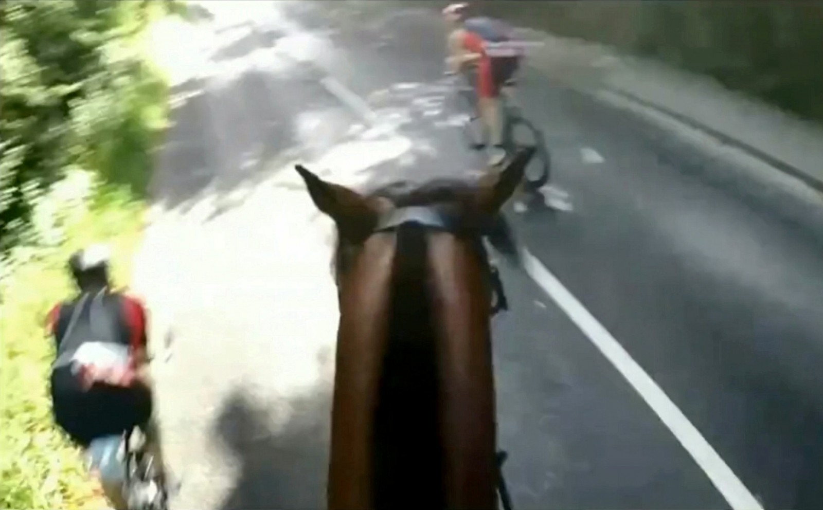 Cyclist Landed With Hefty Fine And A Ban From Iconic Triathlon After High-Speed Collision - While Undertaking A HORSE