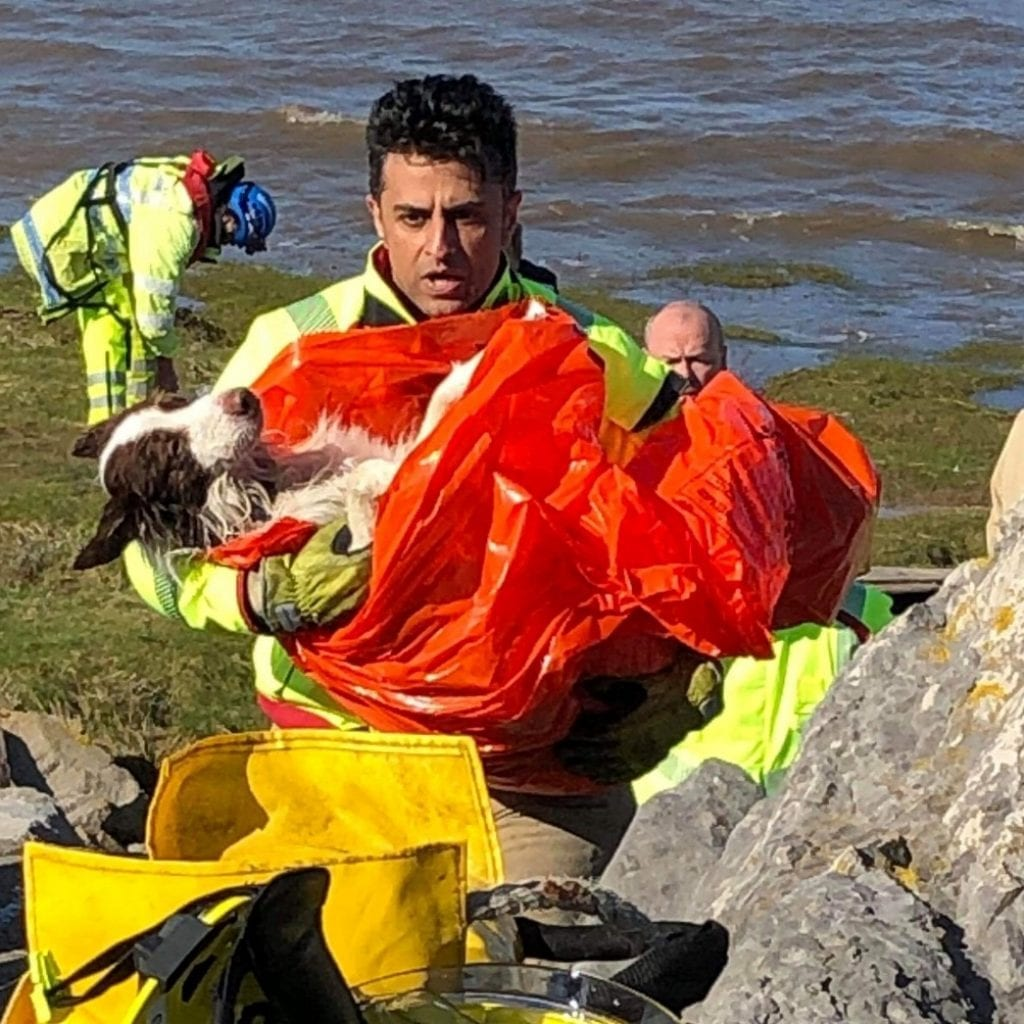 Border Collie Rescued By Coastguards After Drifting 400 Metres Out To Sea For An Hour And A Half Before Being Rescued By Coastguards