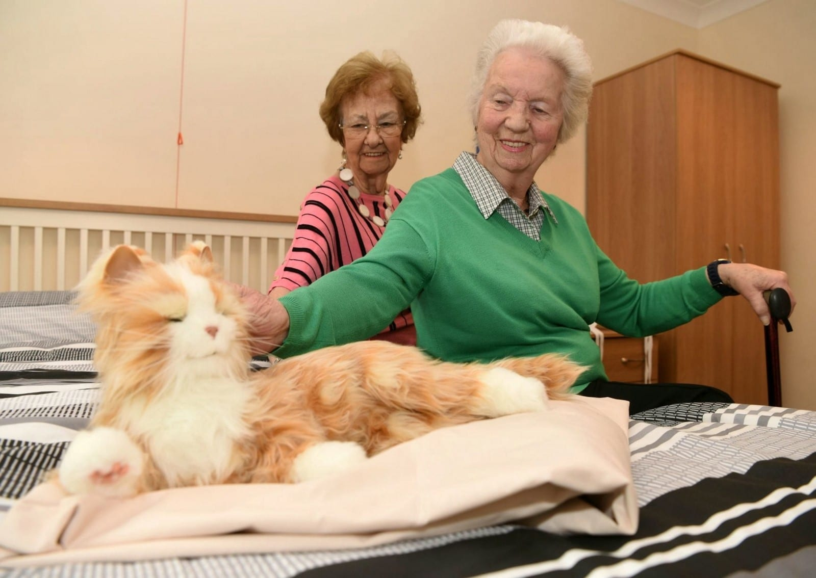 Carers At An Old Folks' Home Are Helping Elderly Residents Fight Loneliness - With Cat & Dog ROBOTS