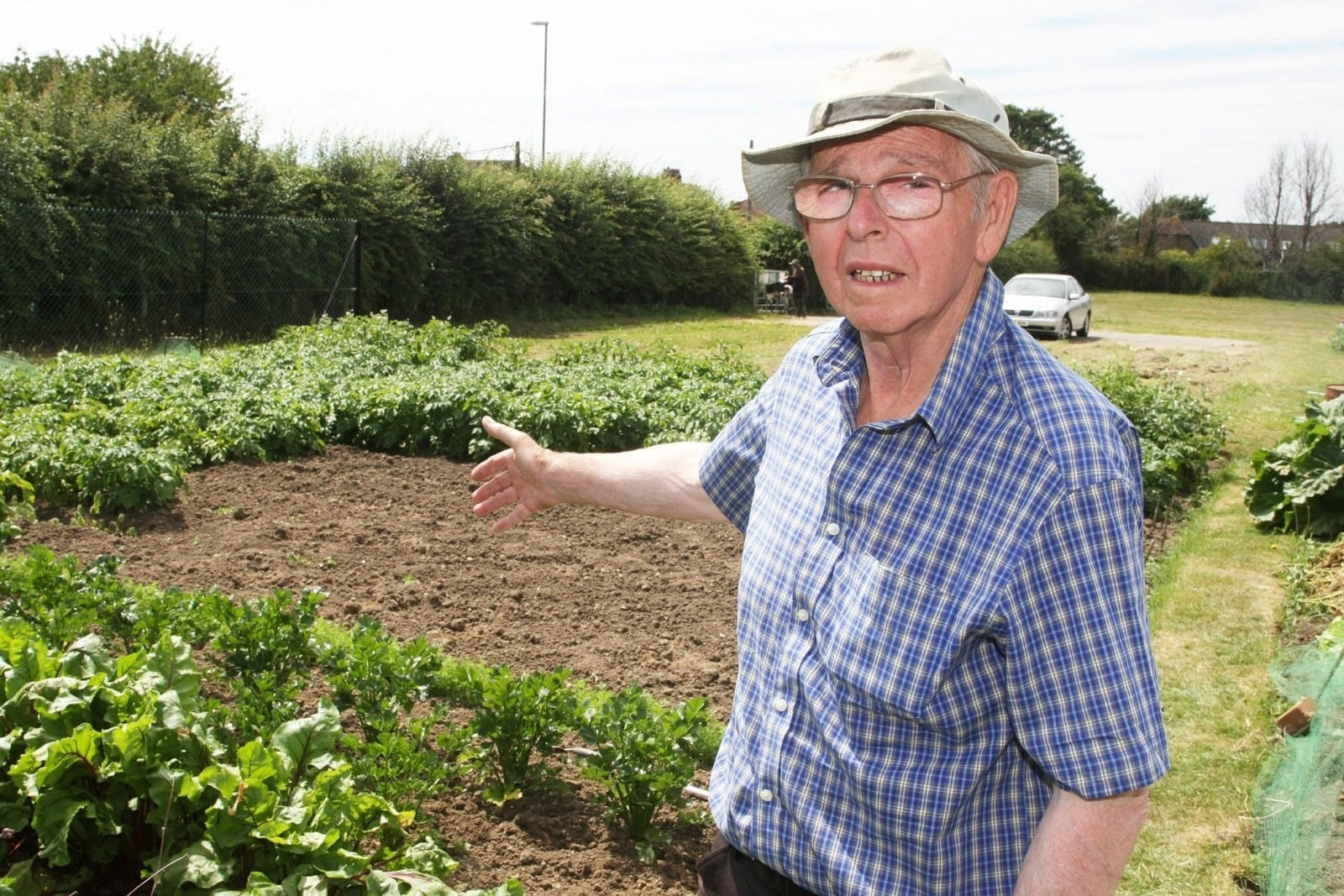 Green-Fingered Pensioner Was Left On The Verge Of Tears After Thieves Raided His Allotment - And Stole All Of His Vegetables