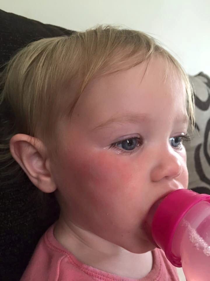 Mum Has Revealed How A Flock Of Seagulls Attacked Her Two-Year-Old Daughter – Just Days After They KILLED Her Dog