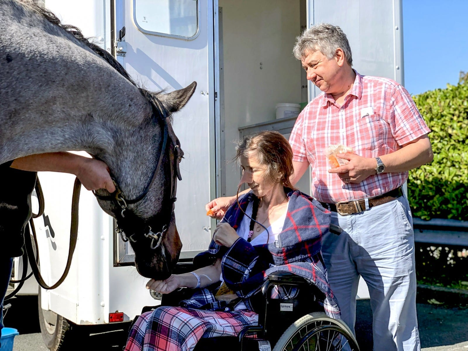Woman In Her 50s Gets Dying Wish Granted By Hospice - To See Her HORSE One More Time