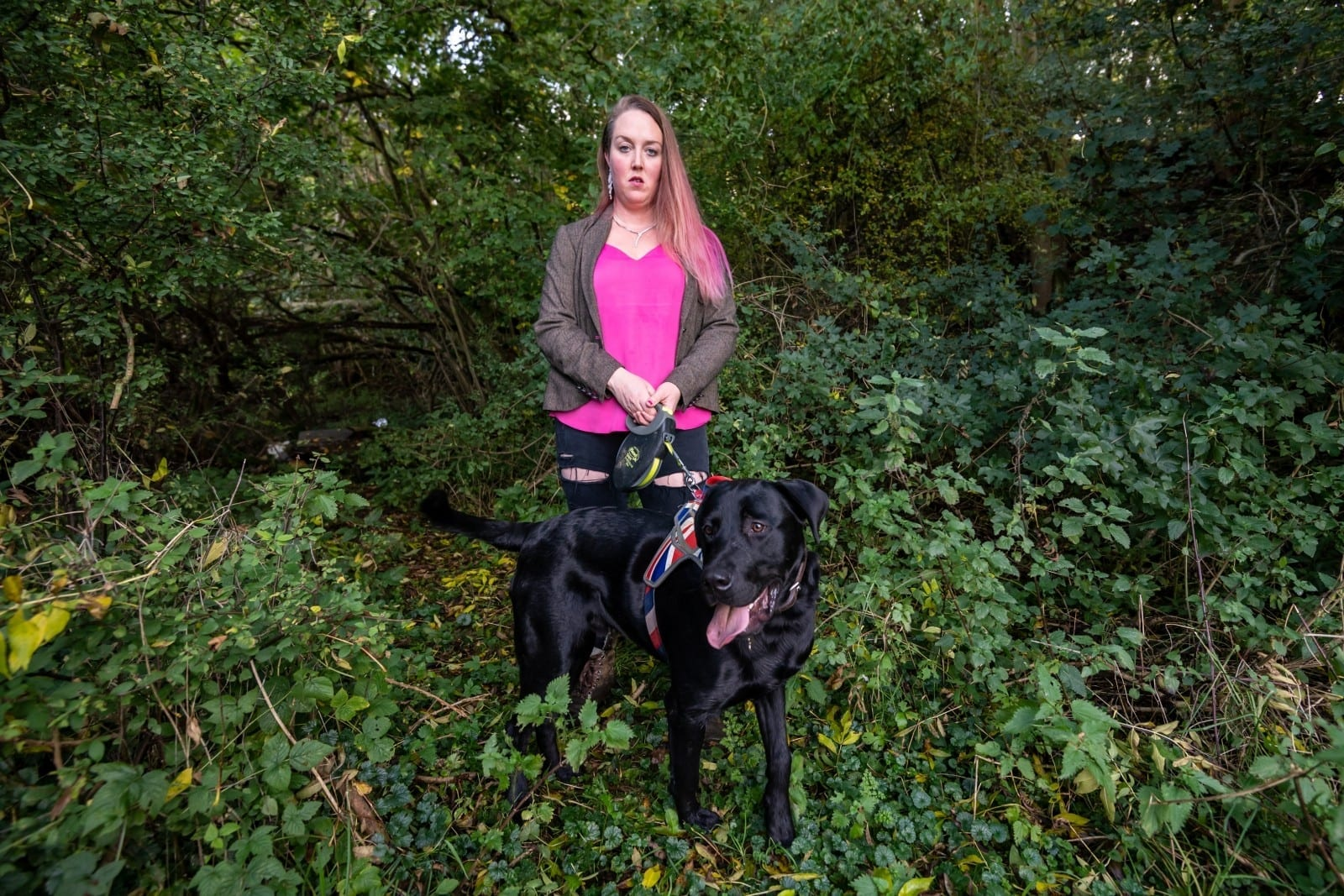 Dog Owner's Horror As Pet Is Attacked By 'PANTHER' During Walk In The Woods