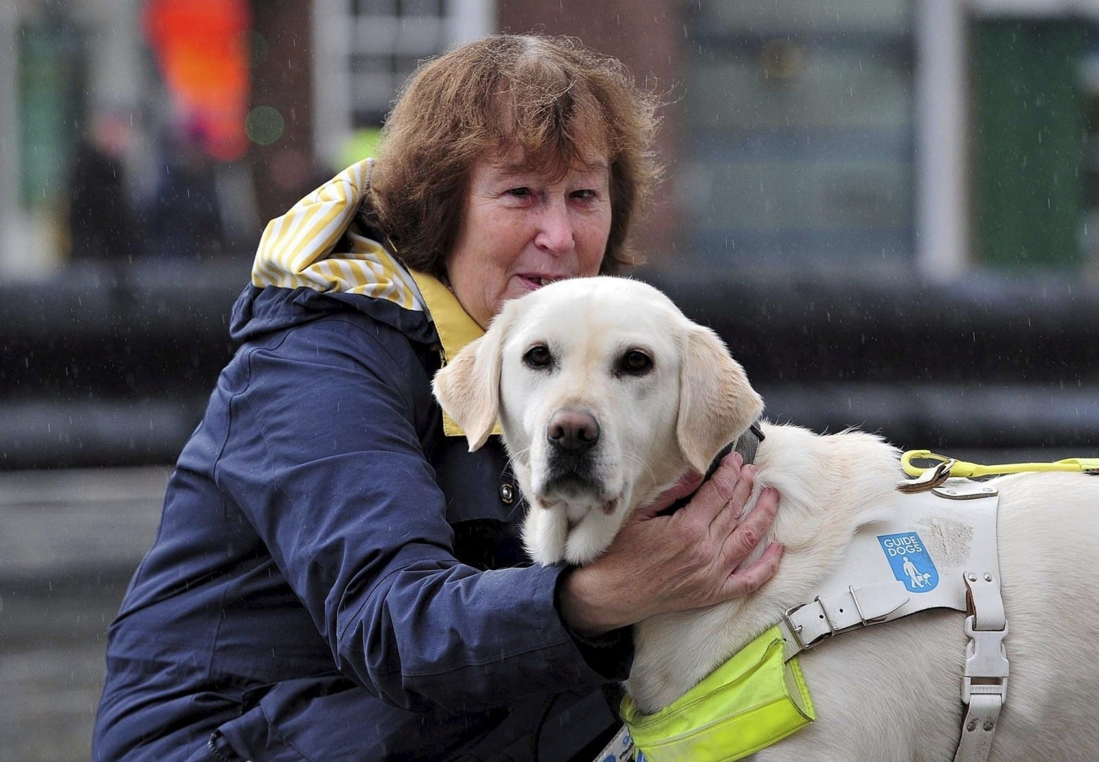 'Having A Sight Issue Is Difficult Enough Without This Added Stress' - Council Investigate Cabbie For Leaving Partially Sighted Pensioner Stranded After Refusing To Take Her Guide Dog