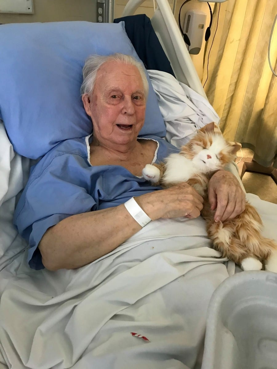 'He Was So Happy To Have A Kitty Again' – Cat Loving Grandfather With Dementia Was Gifted A Cuddly Robotic Kitten To Comfort Him In His Final Days