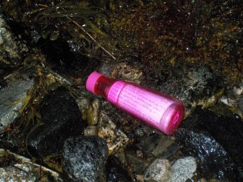 Bottle Containing Ashes Of Young Woman Who Wanted To See The World Washes Up On Island