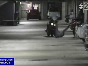 WATCH : Bungling crooks take a tumble