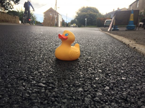 Quack Repair Job - Village Finally Gets Potholes Filled After Residents Floated Rubber Ducks In Protest