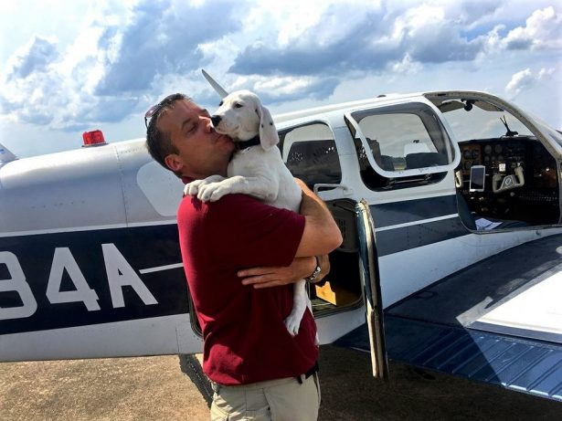 Army Veteran Learns How To Fly So He Can Rescue Hundreds Of Dogs