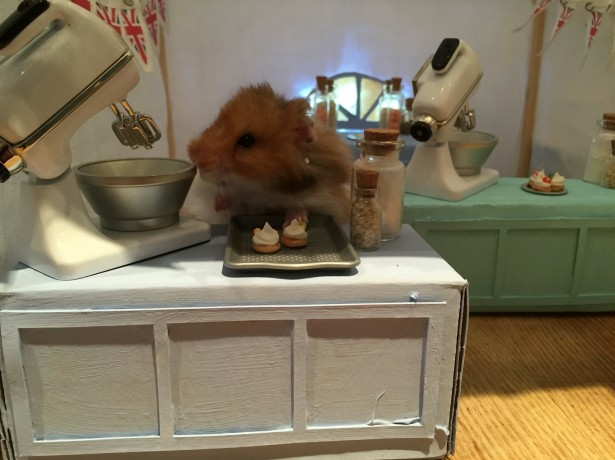 Pet owner builds amazing Great British Bake Off tent for her HAMSTERS, along with dozens of other 'real life' sets
