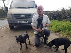 Builder Forced To Live In Van With Three Dogs After Being Forced Out By Extorionate Rent
