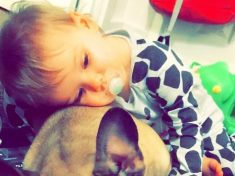 Toddler Suffers Horrific Facial Injuries After Being Mauled By Crazed Dog She Was Told Was Safe To Pet