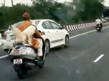 WATCH : Motorcyclist Rides On Busy Road - With Three Dogs Happily Sat Beside Him