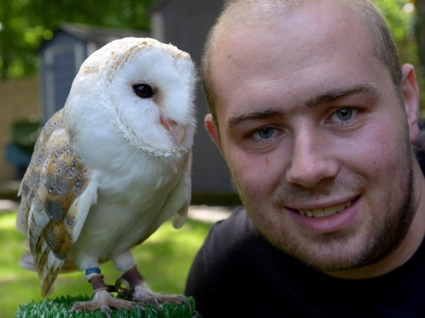 Owl is returned to owner after it holds up village cricket match