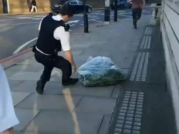 Massive Haul Of Cannabis Found In Mansion Just Yards From Buckingham Palace