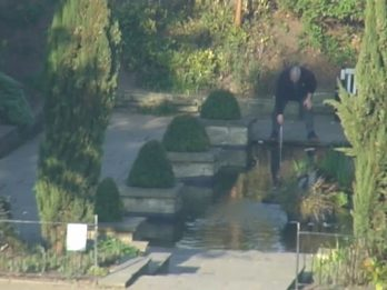 Man Spotted Penny Pinching From 'Wishing Pond' Gets His Marching Orders From Park Warden