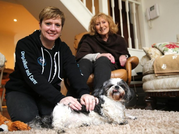 Woman Gives Up 30-Year Career To Open Britain's First Pet Taxi Service
