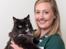 Miracle Moggie Brought Back From The Brink Of Death After Owner Refused To Put Him To Sleep – When He Accepted His Favourite Treat