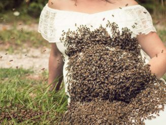 Mum Who Made Headlines After Posing With 20,000 BEES In Maternity Shoot Suffers Stillbirth