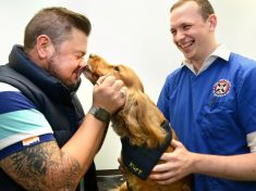 Miracle Dog Brought Bark To Life After It 'Died'- For 20 Minutes