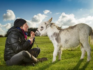 Meet Little Ottie : The Worlds Smallest Donkey At Just 19 Inches Tall