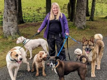 Dog-walker 'played dead' during savage attack by rescue pet - and 'may lose use of both arms'