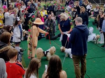 Pooch Pair Finally Marry In Dog Wedding - Officiated By Pug Vicar!
