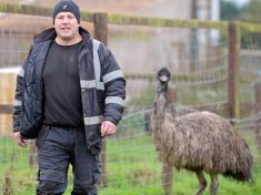 Dad-Of-Two Wrestled Rampaging EMU To The Ground Outside Primary School