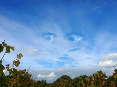The Real-Life Eye-Cloud – A Perfect FACE Which Appeared In The Sky