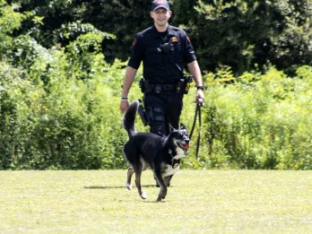Mum Shocked When Police Dog She Trained As A Pup Saved Her Son's Life After Fall