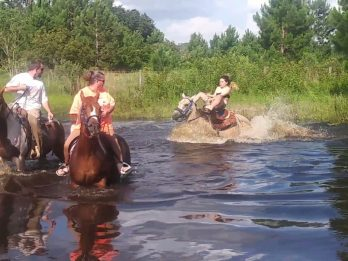 Frightening Footage Shows The Moment Woman Is Pushed Underwater After Her 1100lb Horse Became Spooked In A Pond